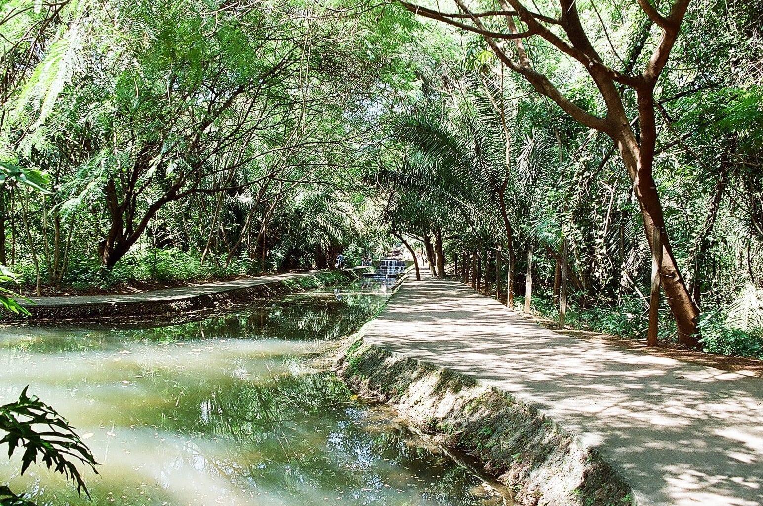 Bosque dos Buritis Goiânia Brasil