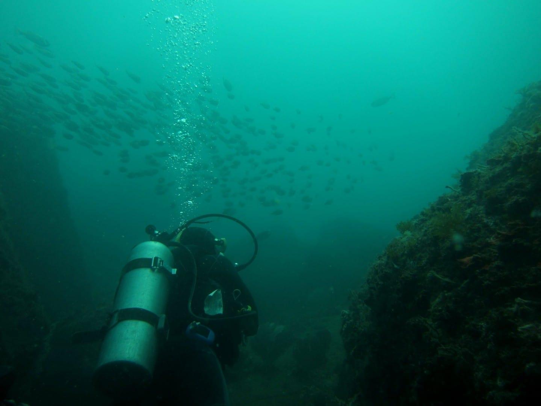 Buceo en Cabo Frío Cabo Frio Brasil