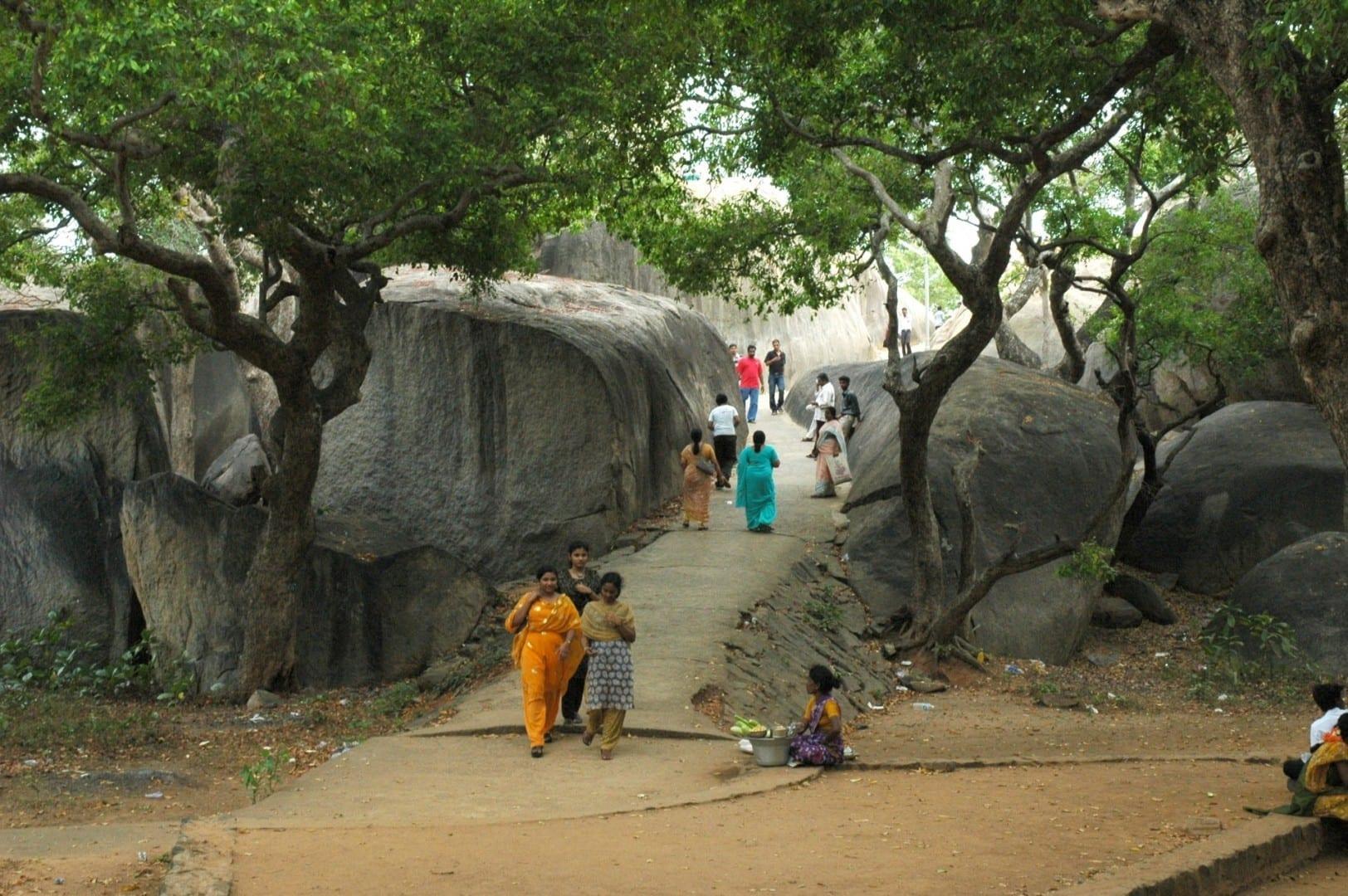 Caminando por el bosque Mamallapuram-Mahabalipuram India