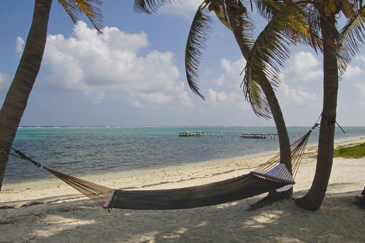 De Las Islas Caimán Hamaca Palmeras Islas Caimán