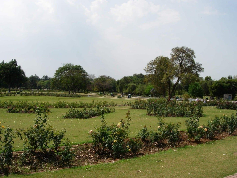 El jardín de rosas Chandigarh India