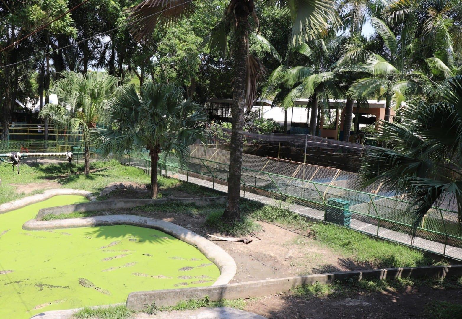 El Parque de los Cocodrilos Davao Filipinas