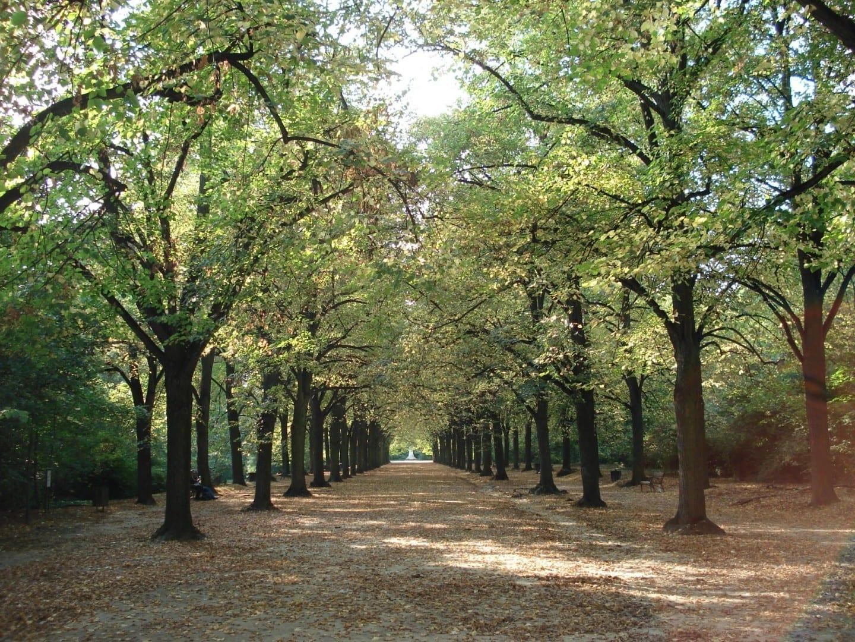 El parque Erzsébet, el parque más bonito de Gödöllő Gödöllő Hungría