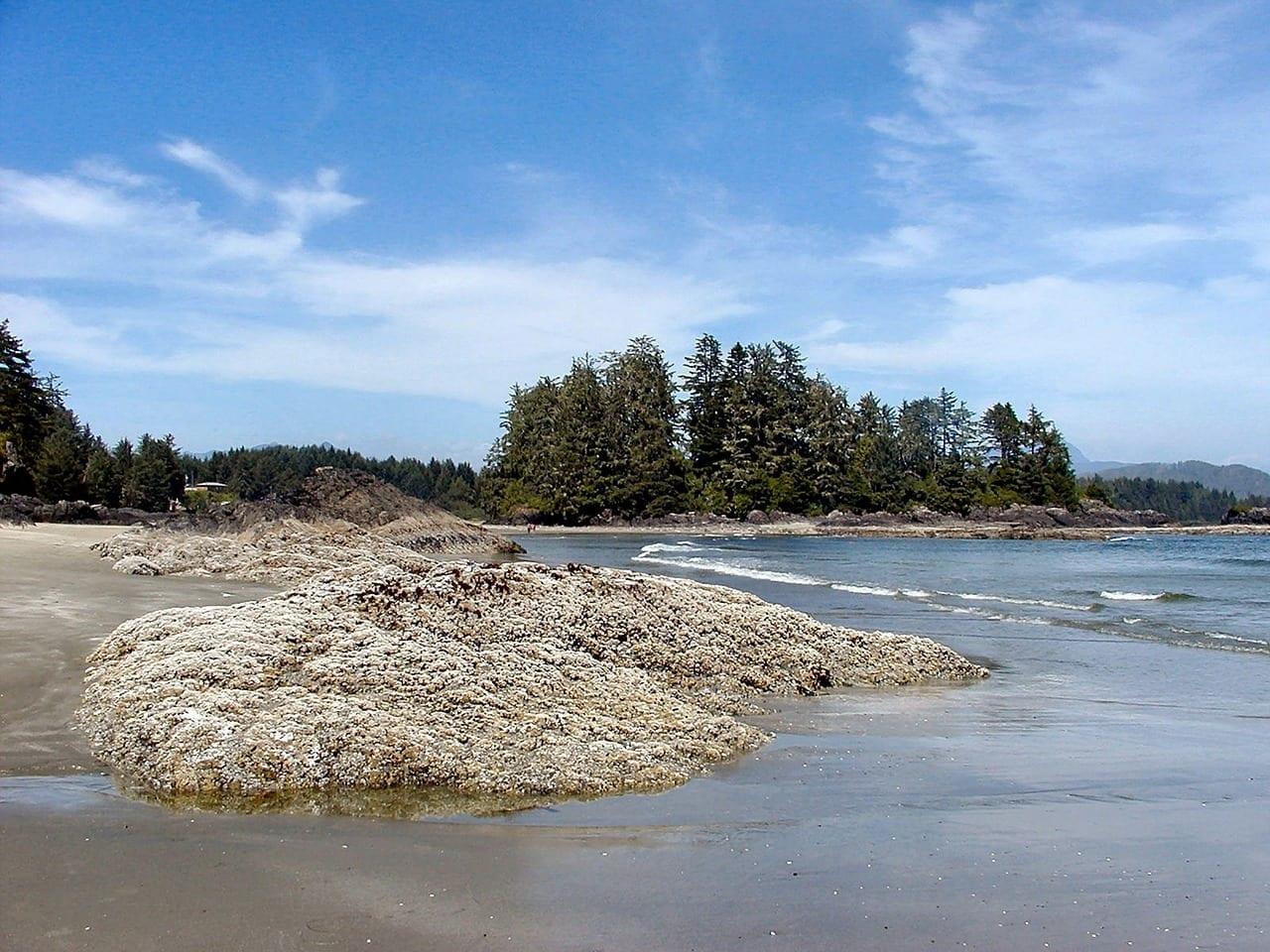 Isla De Vancouver Tofino Long Beach Canadá