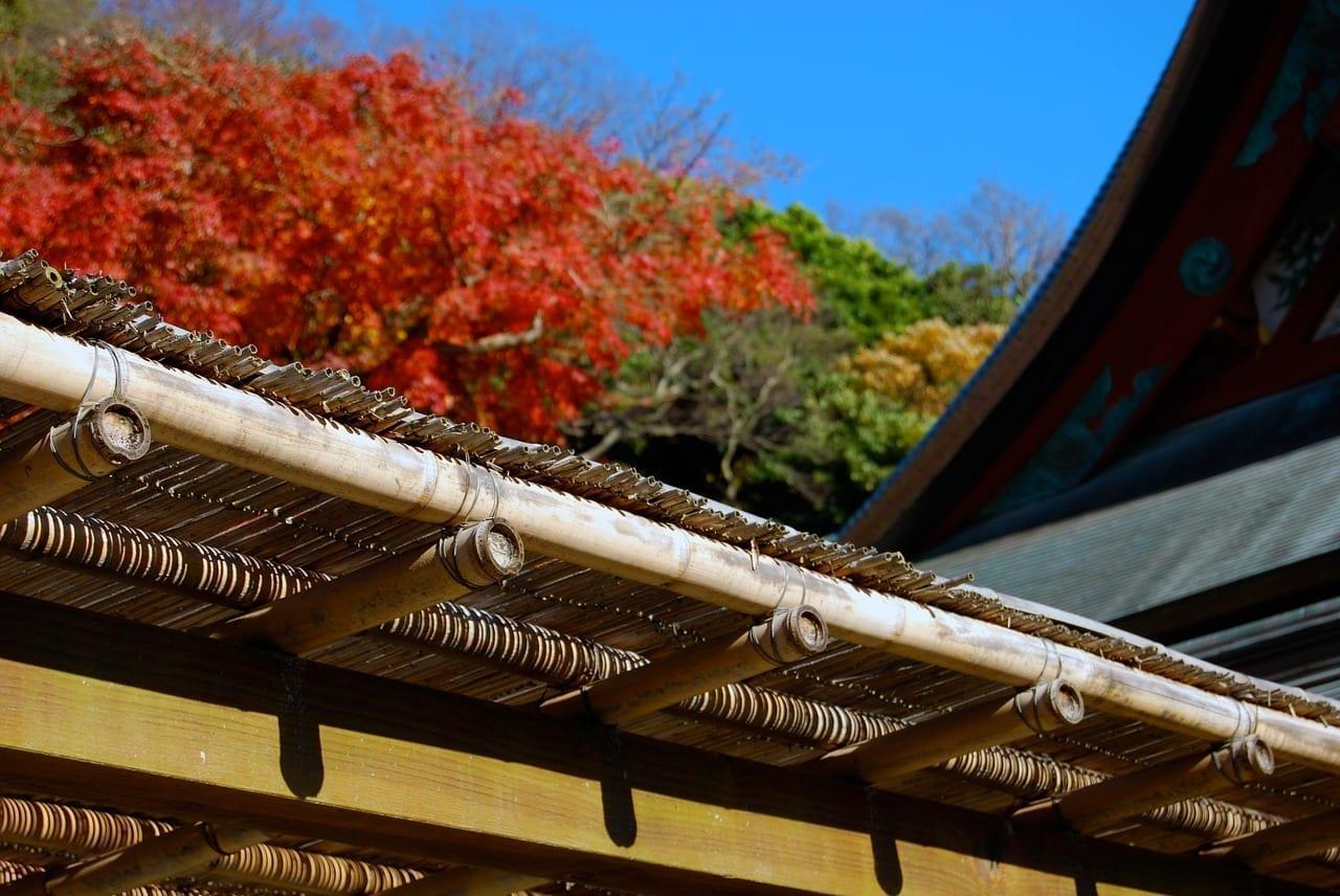 Japón Kamakura Japonés Japón