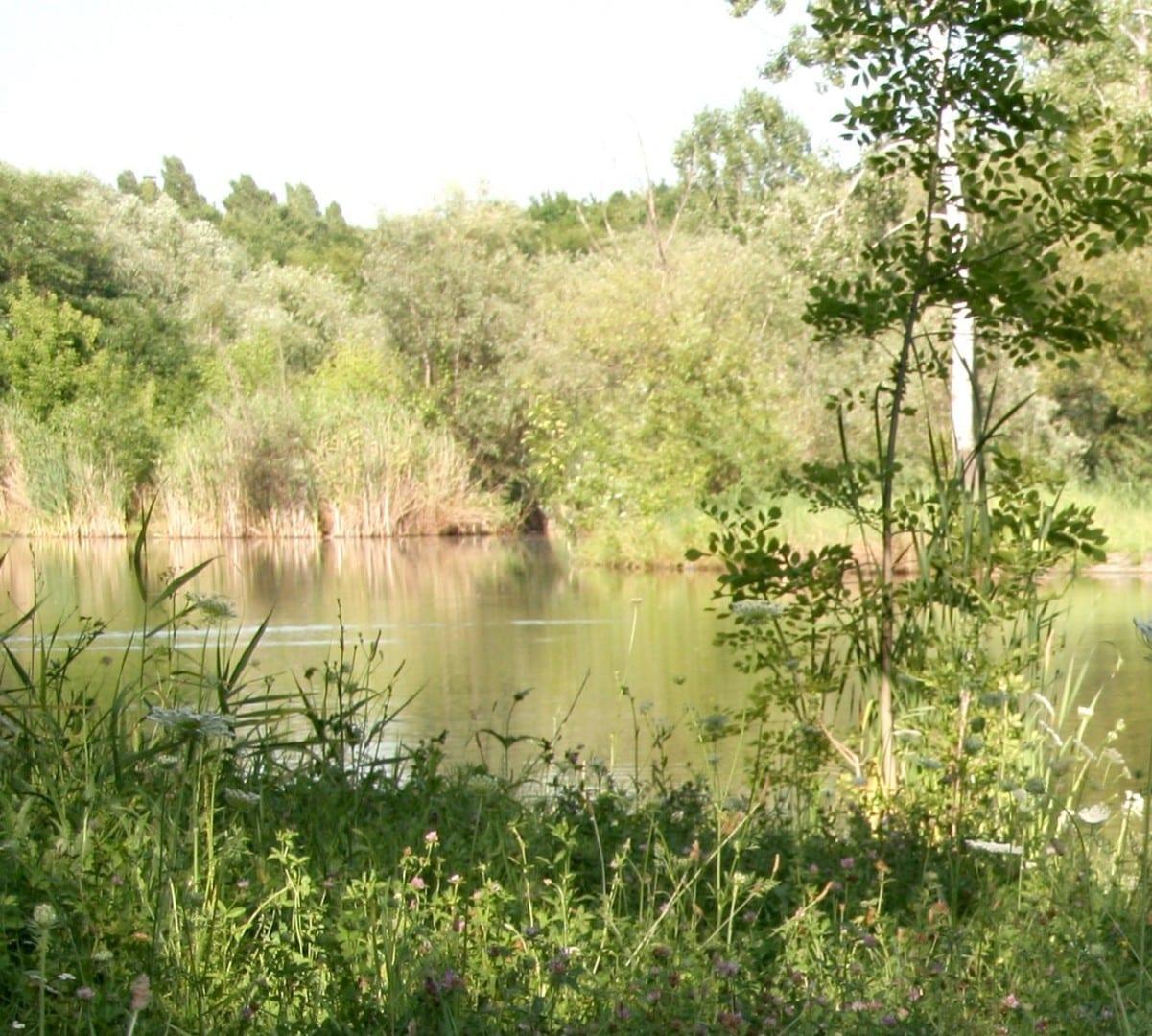 Jardín botánico Chisinau Moldavia