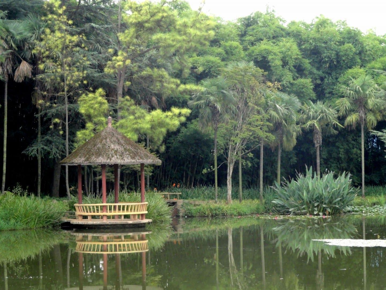 Jardín Botánico de Kunming Kunming China