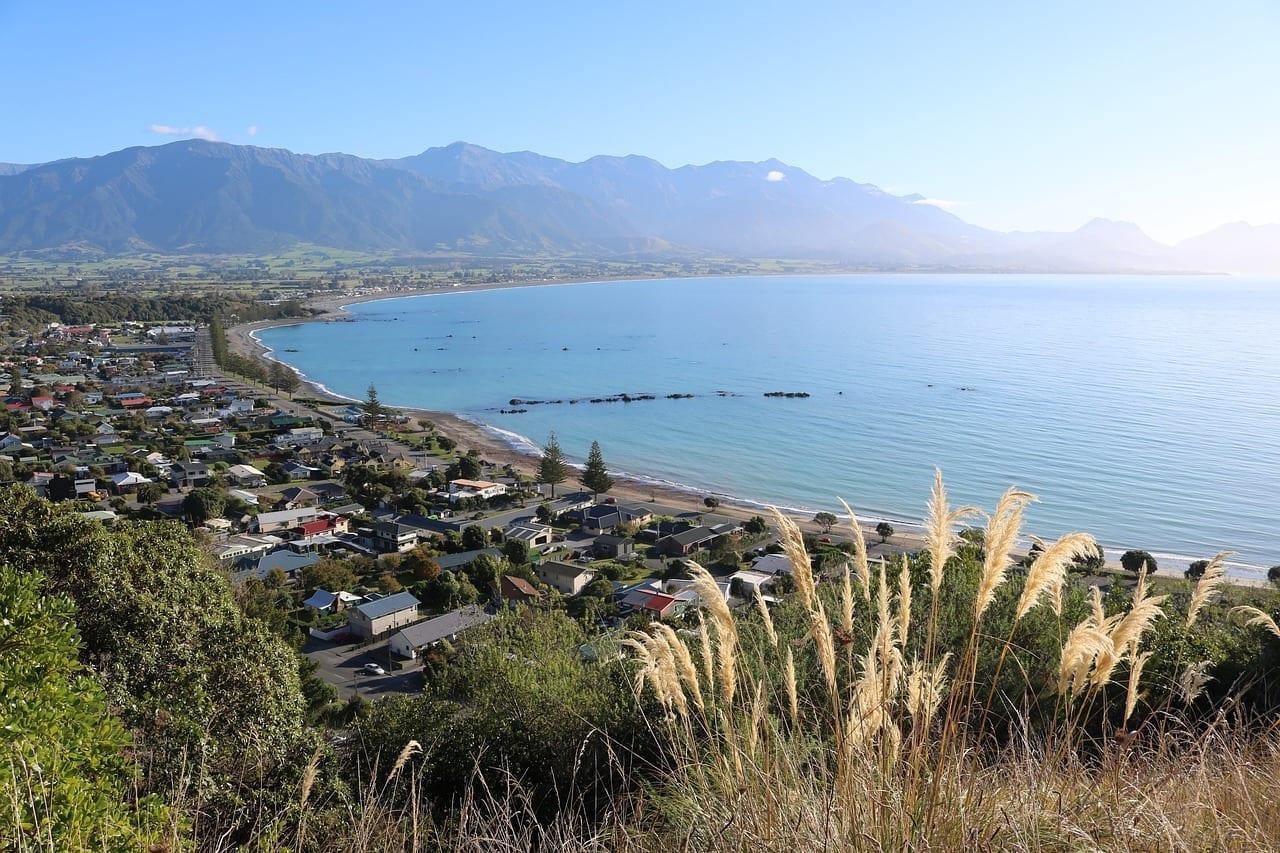 Kaikoura Nueva Zelanda Toetoe Nueva Zelanda