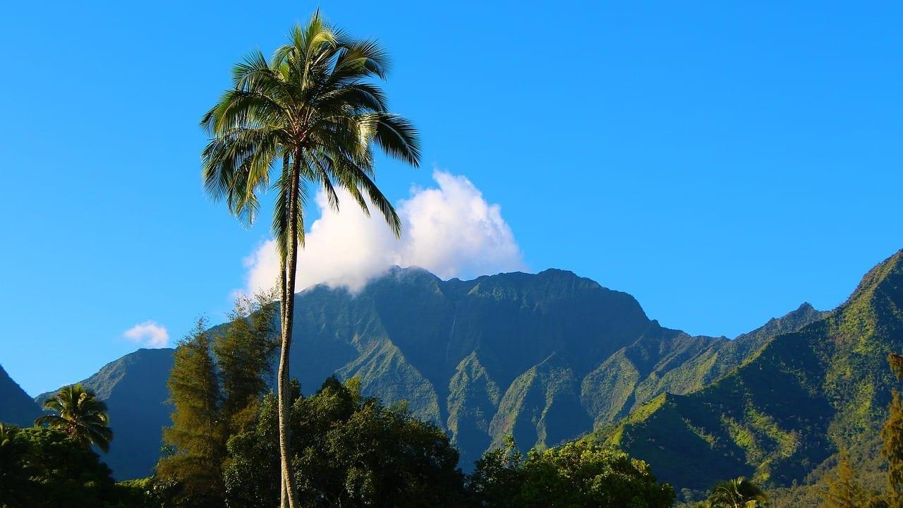 Kauai Hawaii Hanalei Estados Unidos