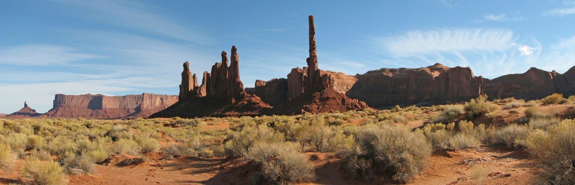 La vegetación en el Valle de los Monumentos es muy parecida a la del resto de la Meseta de Colorado Monument Valley Parque Nacional UT Estados Unidos