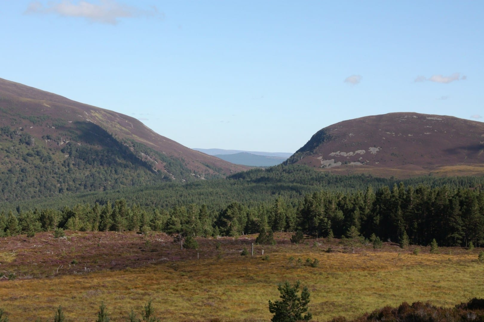 Los Cairngorms Cairngorms Parque Nacional Reino Unido