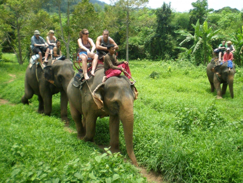 Los elefantes en Ban Kwan Koh Chang Tailandia