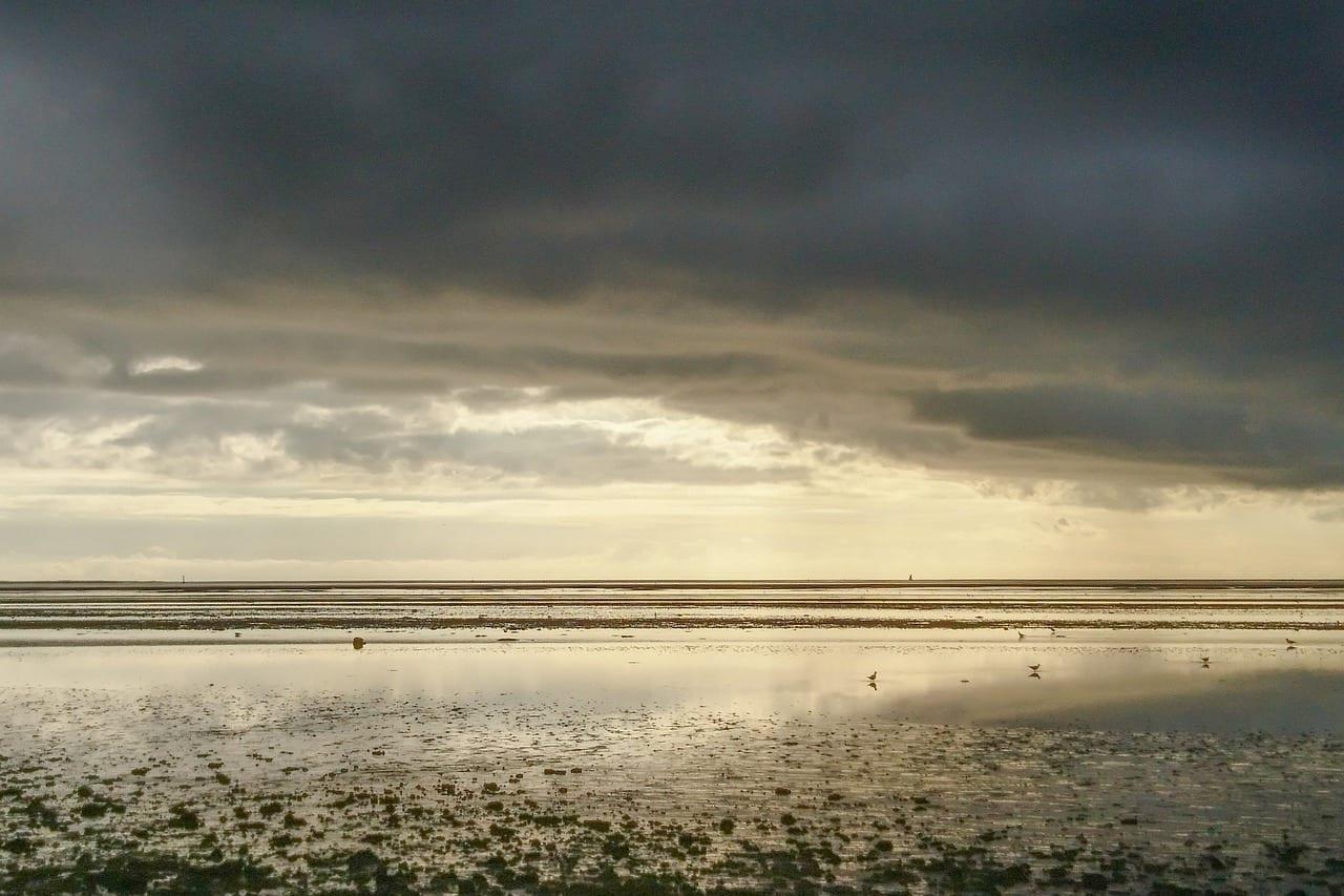 Mar De Wadden West Coast Esbjerg Dinamarca