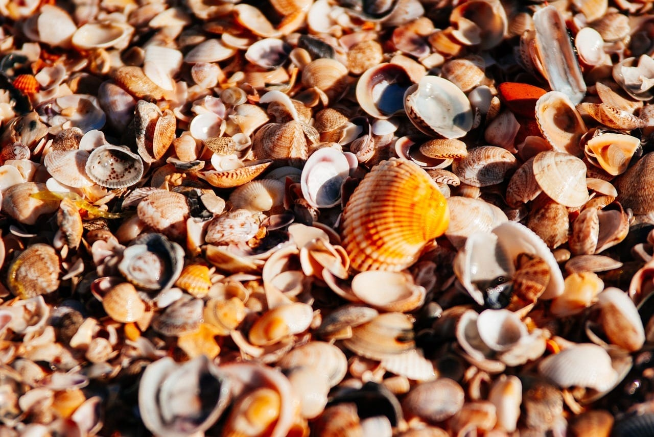 Mar Playa Orange Francia
