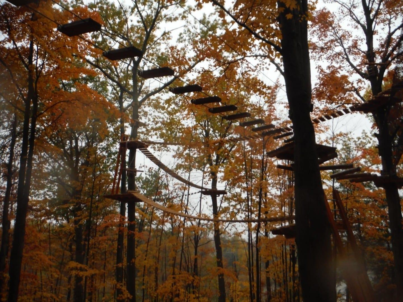 Paseo por la copa del árbol en el lago Hear Brampton Canadá