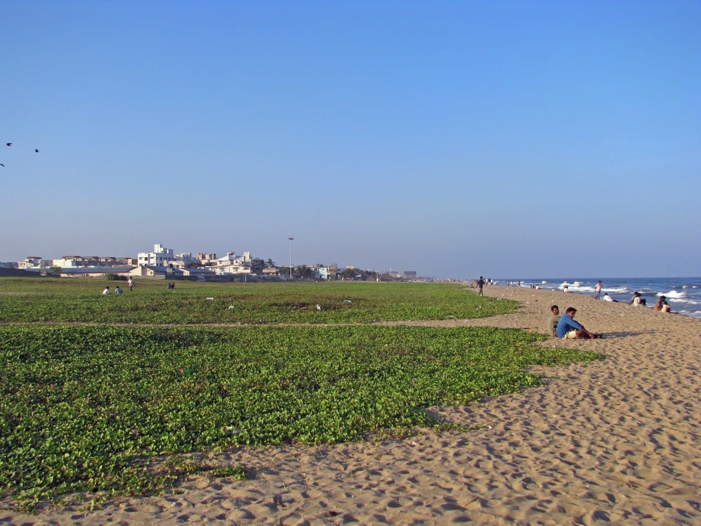 Playa Breezy Chennai India