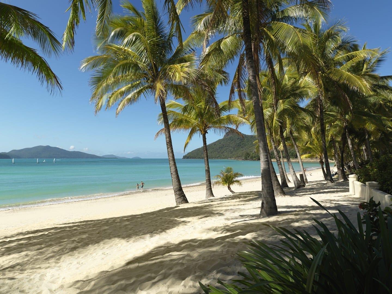 Playa Catseye Islas Hamilton Australia