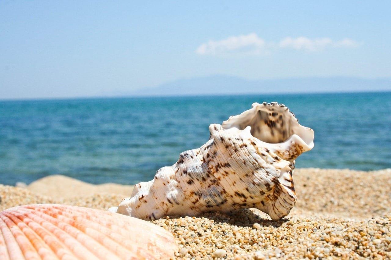 Playa Concha Kavala Grecia