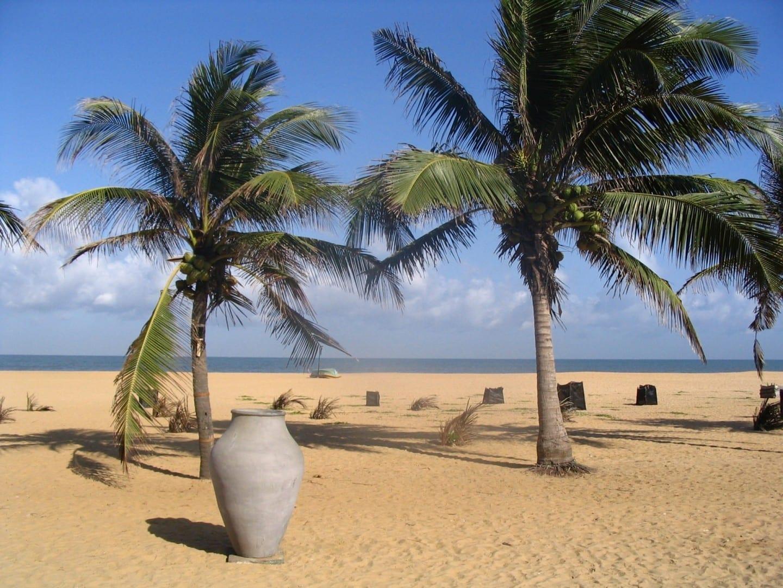 Playa de Negombo Negombo Sri Lanka