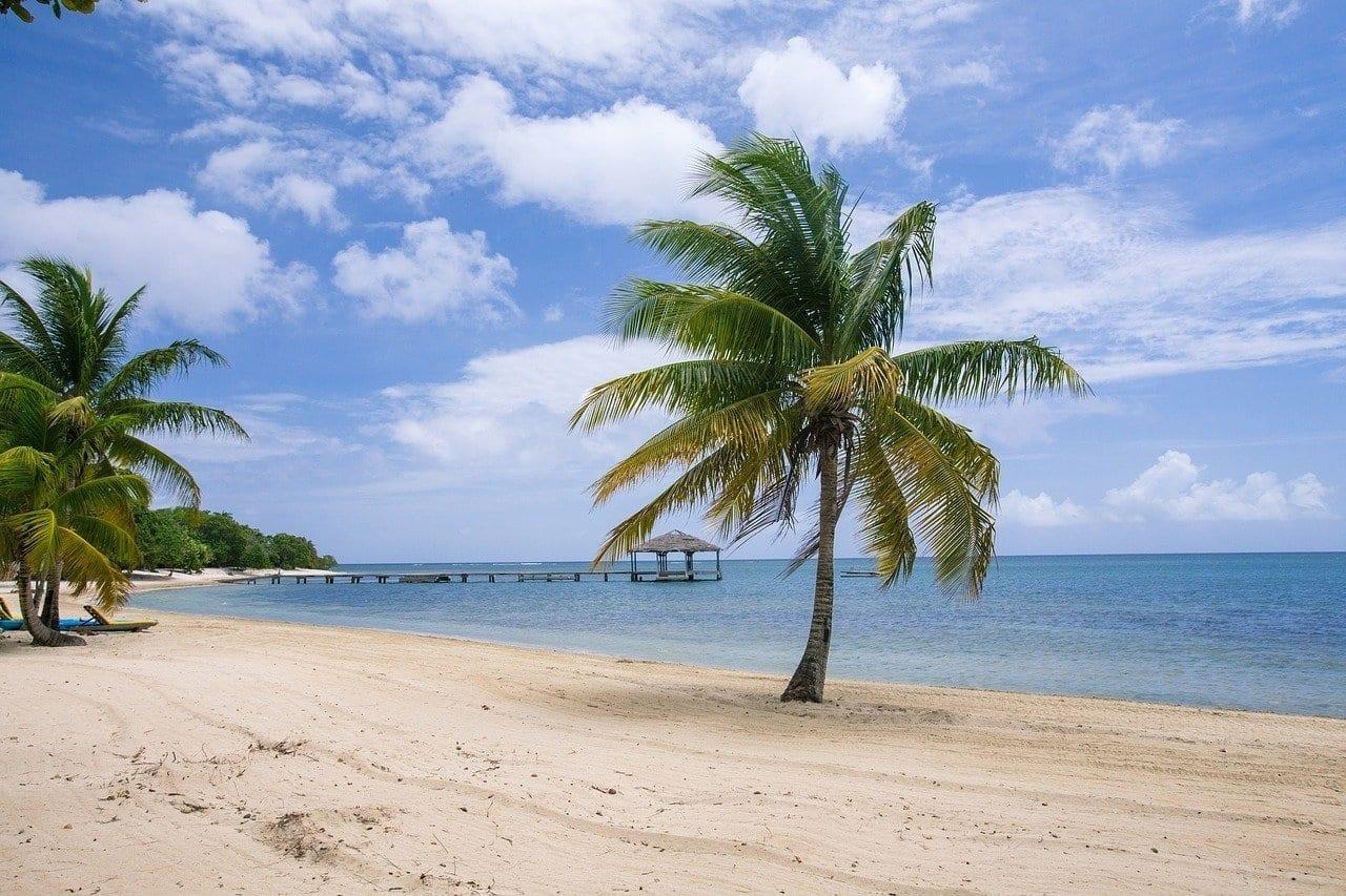 Playa De Palmetto Bay Roatán Islas De La Bahías Honduras