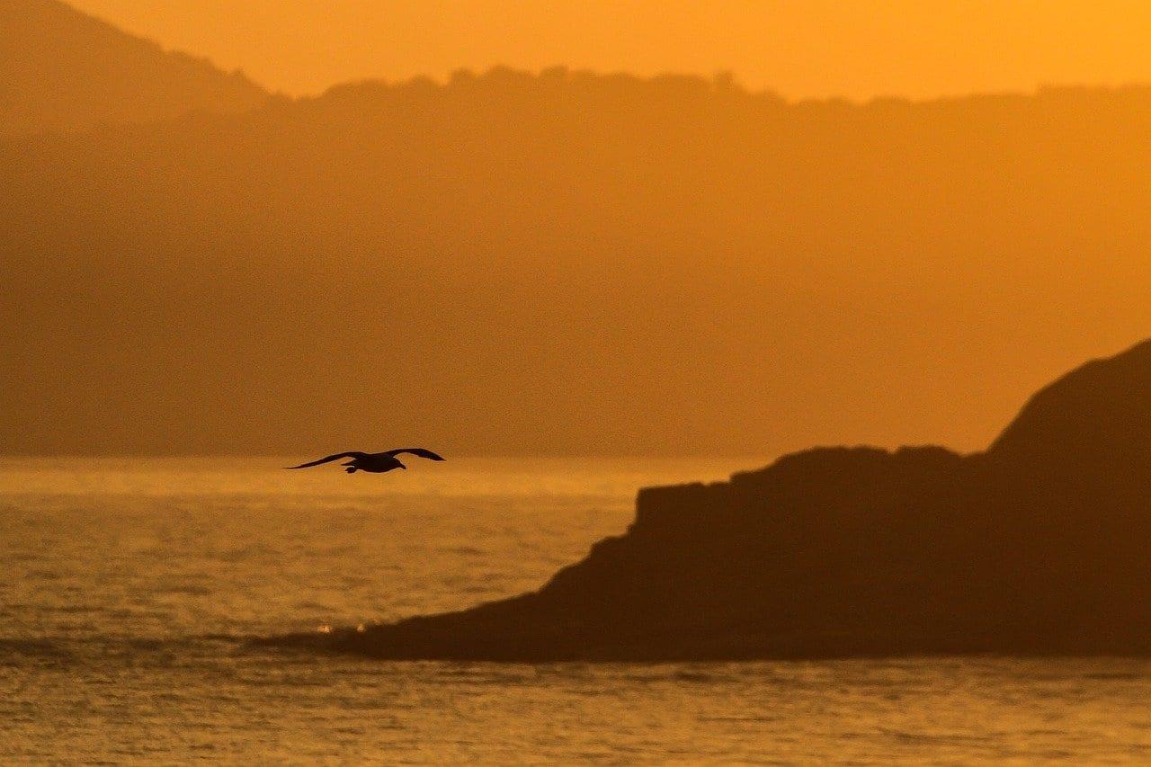 Puesta De Sol Rio De Janeiro Cabo Frio Brasil