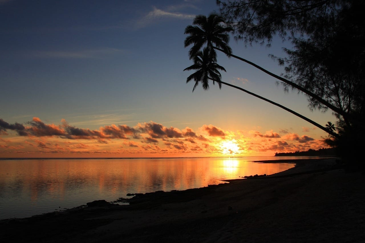 Rarotonga Puesta De Sol Palmas De Coco Islas Cook