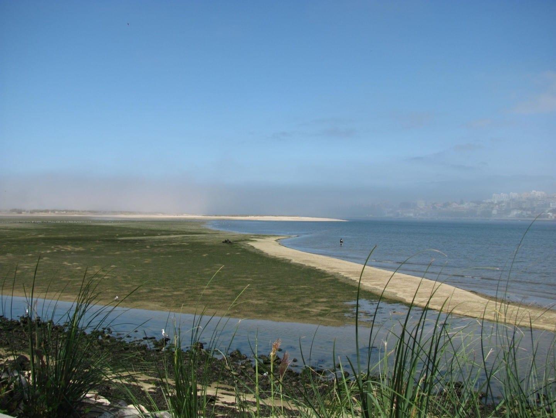 Reserva natural del estuario del Duero Vila Nova de Gaia Portugal