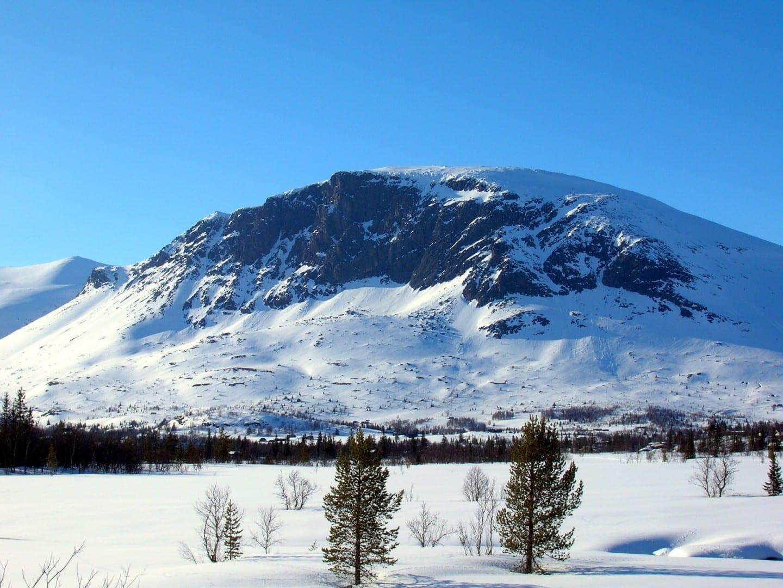 Skogshorn, en el municipio de Hemsedal. Hemsedal Noruega