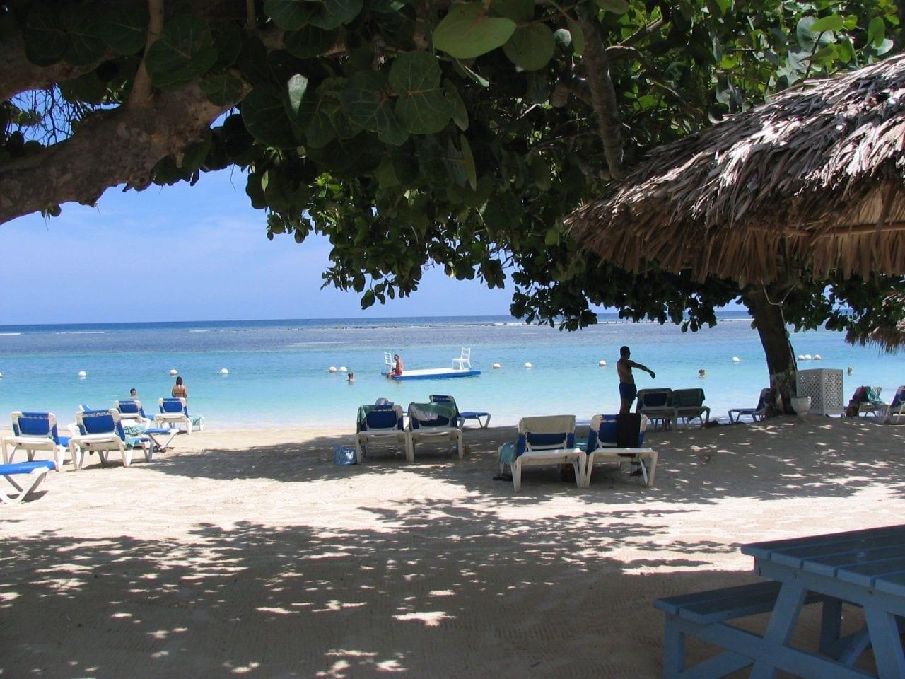 Tómese un descanso del sol y relájese en la playa bajo una palmera Montego Bay (Bahía Montego) Jamaica