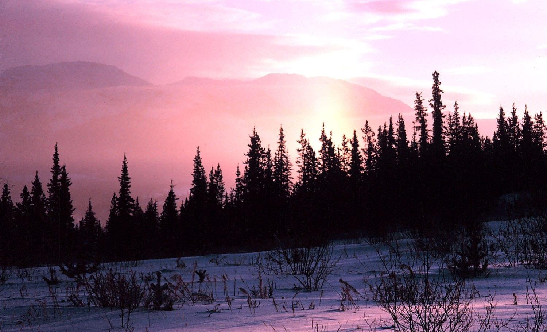 Whitehorse, Yukón Whitehorse Canadá