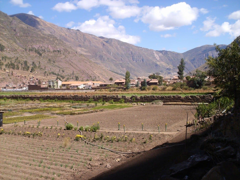 Zona agrícola en Pisac, con una vista de la ciudad al fondo. Pisac Perú