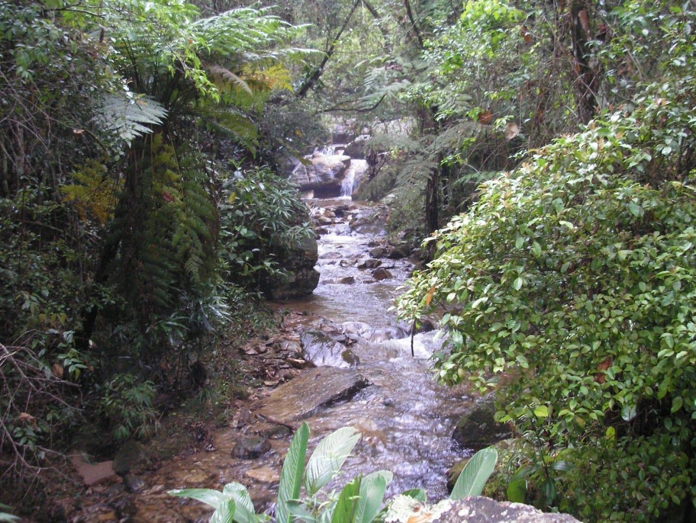 Arroyo en la Serra do Japi Jundiai Brasil
