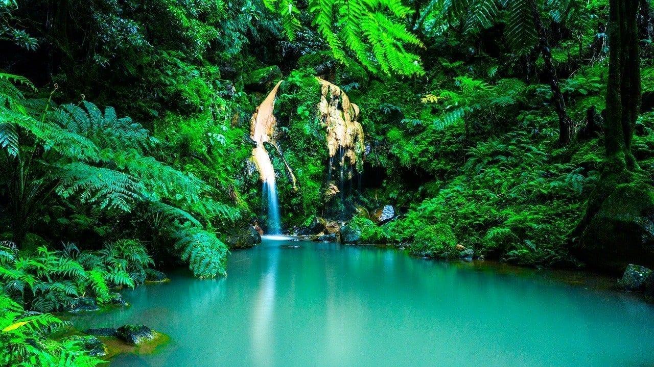 Azores Cascada Oasis Portugal
