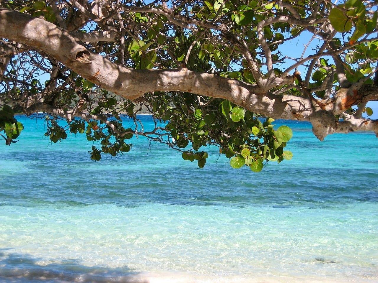 Barbados El Caribe Mar Barbados