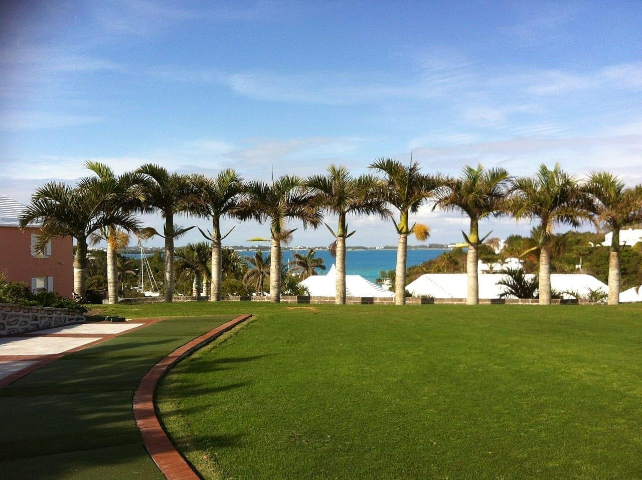 Bermudas De Golf Océano Bermudas