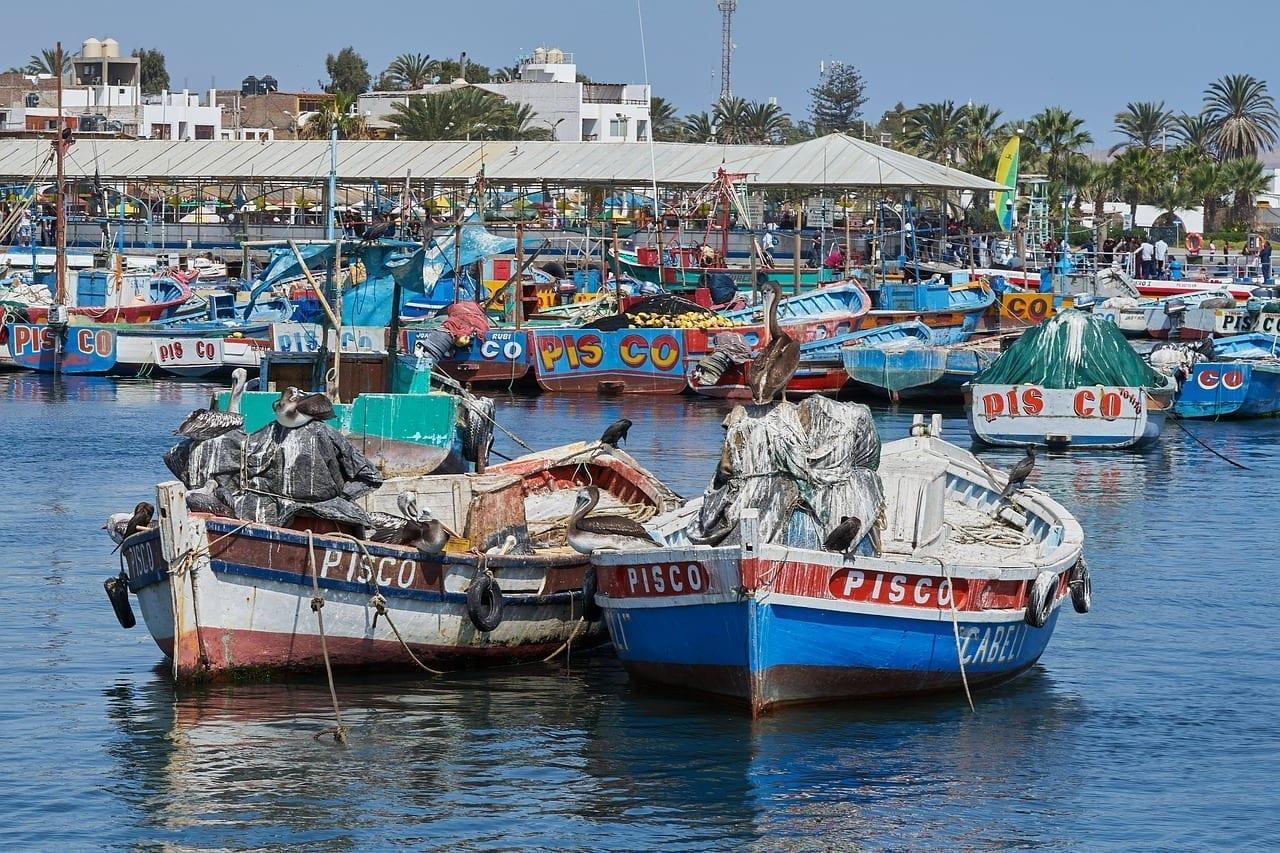 Botes Pesqueros Pisco Muelle Perú