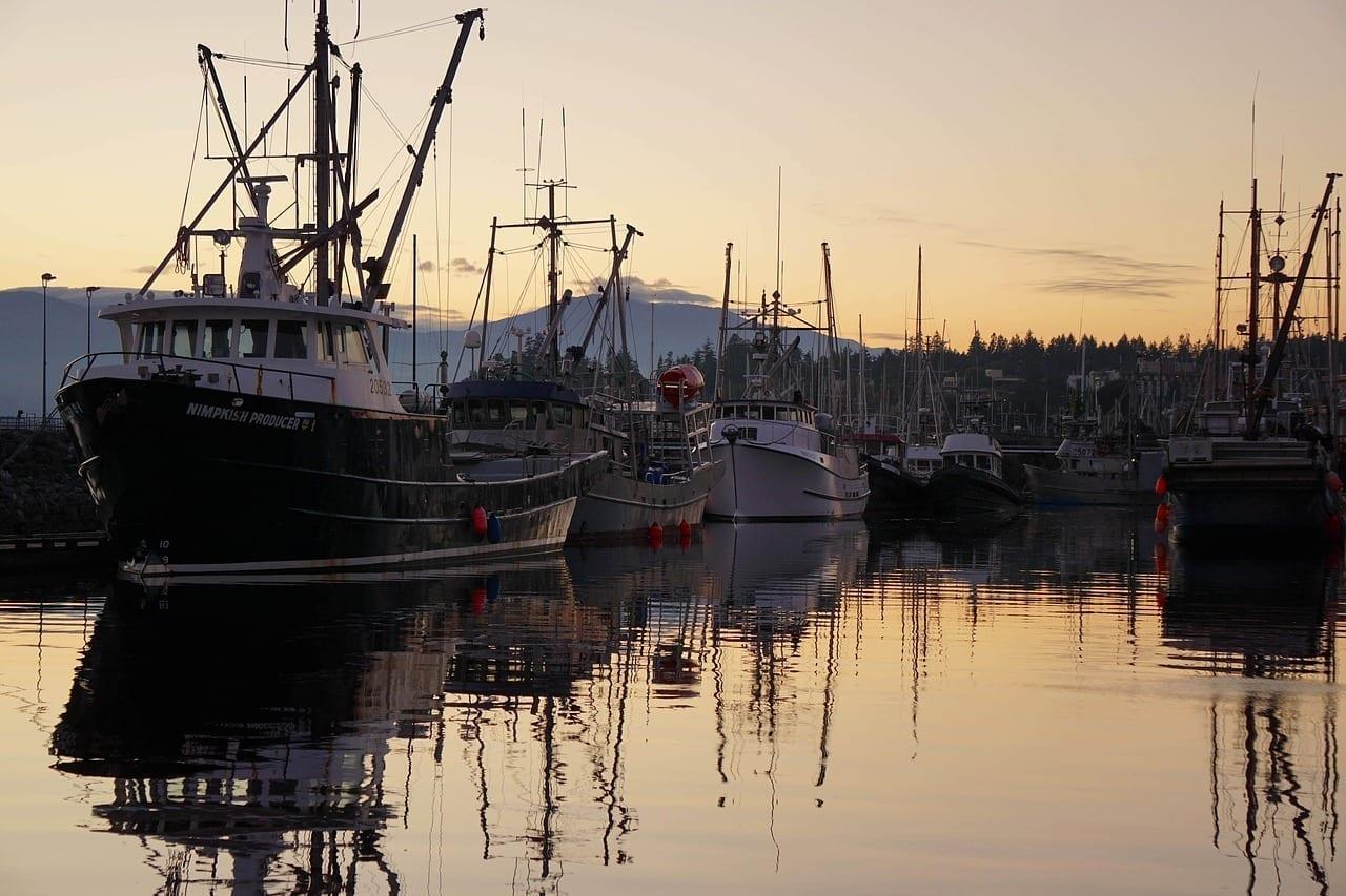 Comox Harbor Marina Barcos Canadá