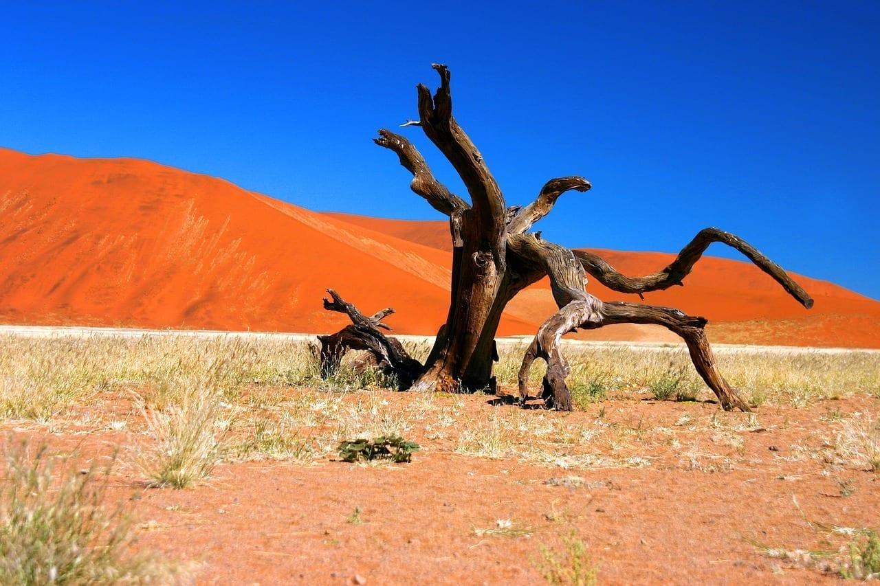 Desierto Namib Sossusvlei Namibia
