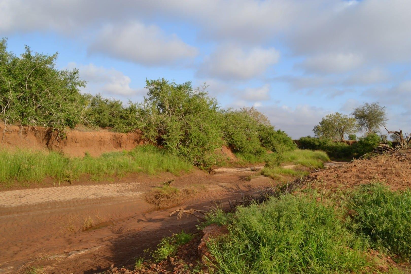 El lecho del arroyo seco del río Voi Tsavo East National Park Kenia