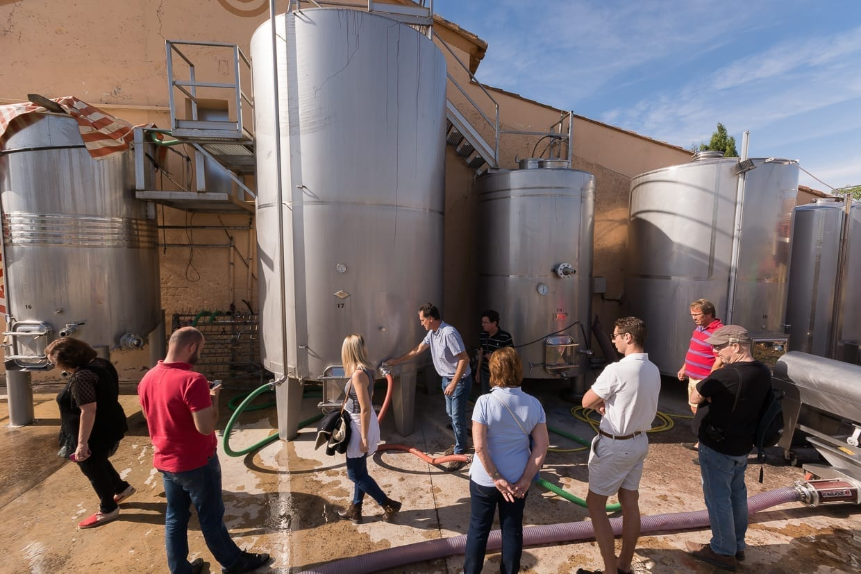 Explicación del proceso de destilación durante una cata de vinos Requena España