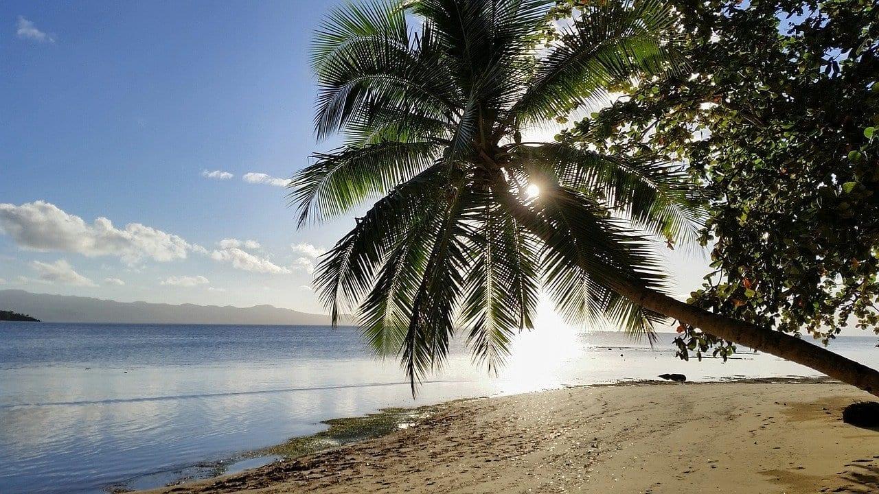 Fiji La Naturaleza De Las Islas Fiyi Fiyi