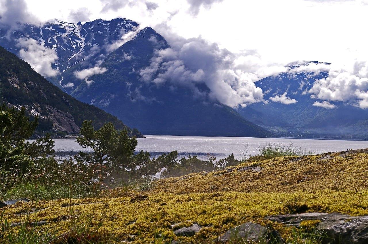 Fiordo Hardanger Fiordo Noruega Noruega