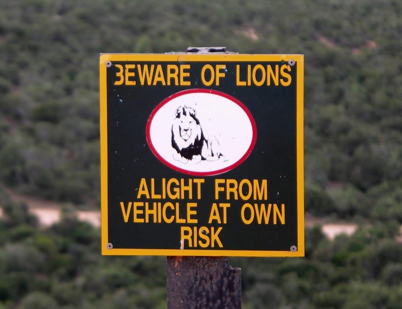Firme en el mirador de Zuurkop Parque nacional de los Elefantes de Addo República de Sudáfrica