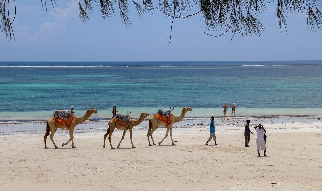 áfrica Kenia Diani Beach Kenia