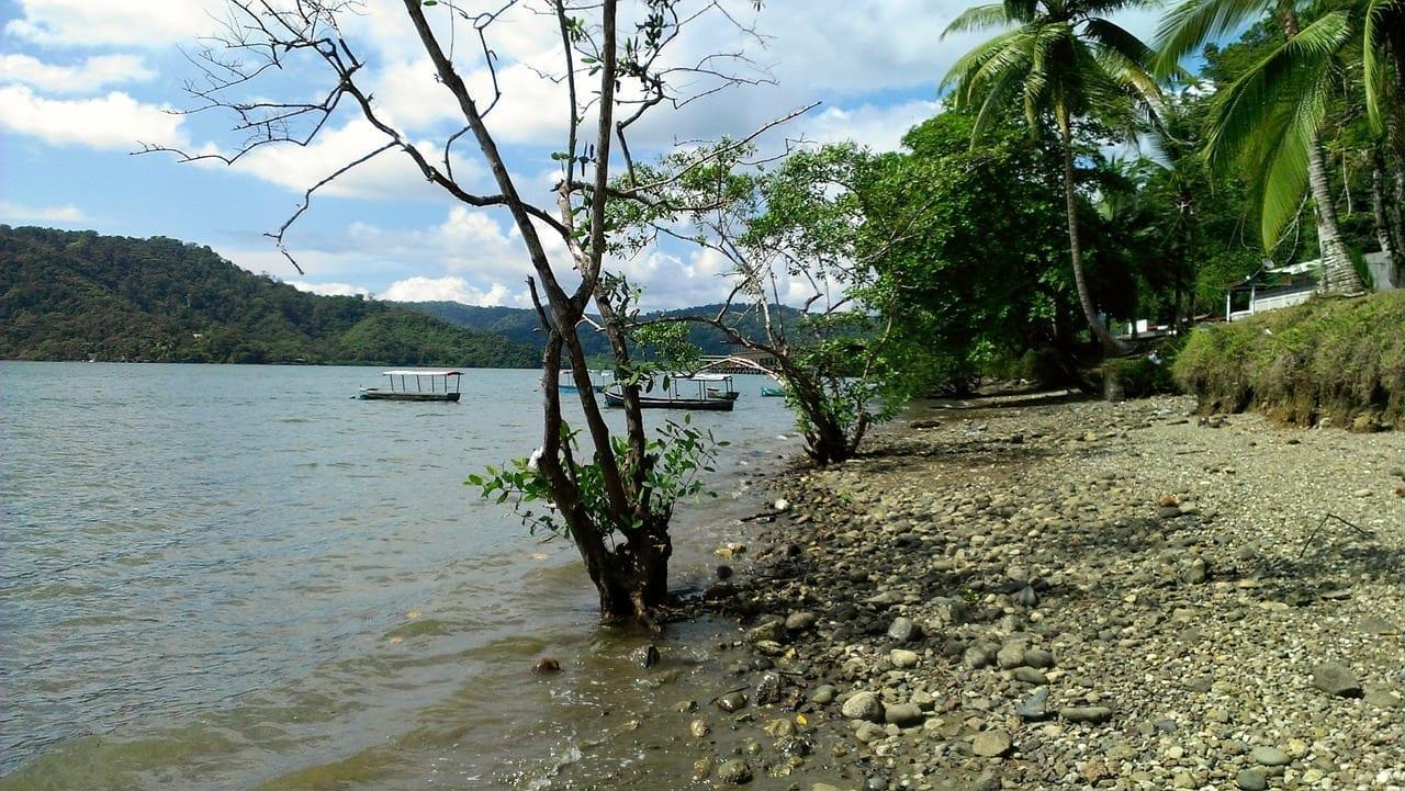 Hermoso Puerto Golfito Costa Rica Puntarenas Costa Rica