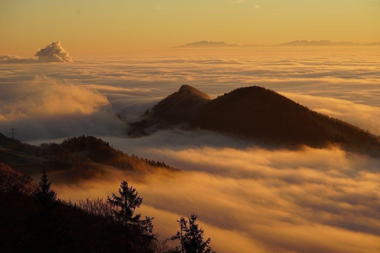 Homberg Nubes Selva Marine Italia