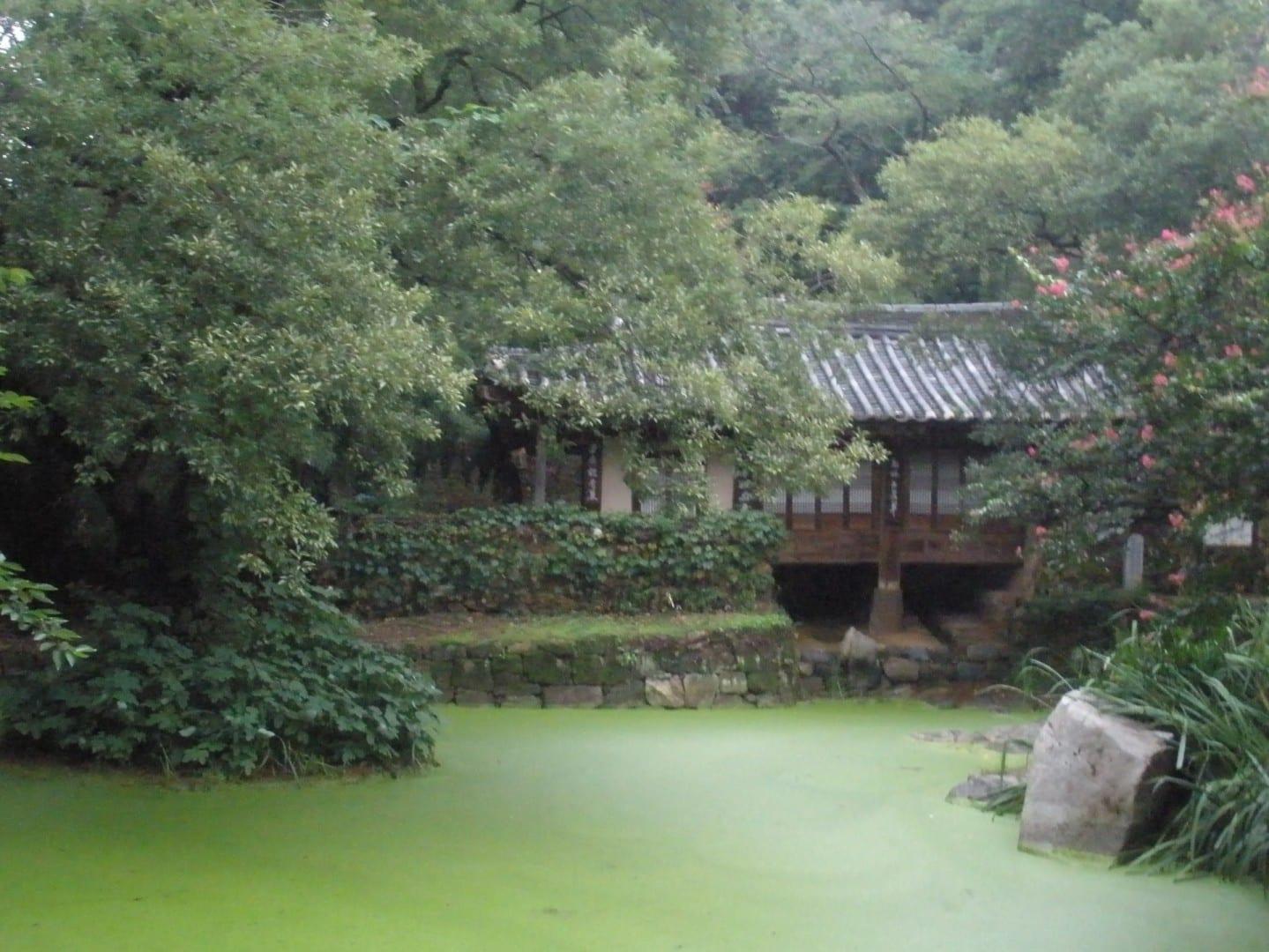 Jardines del Parque Histórico de Uam. Daejeon Corea del Sur