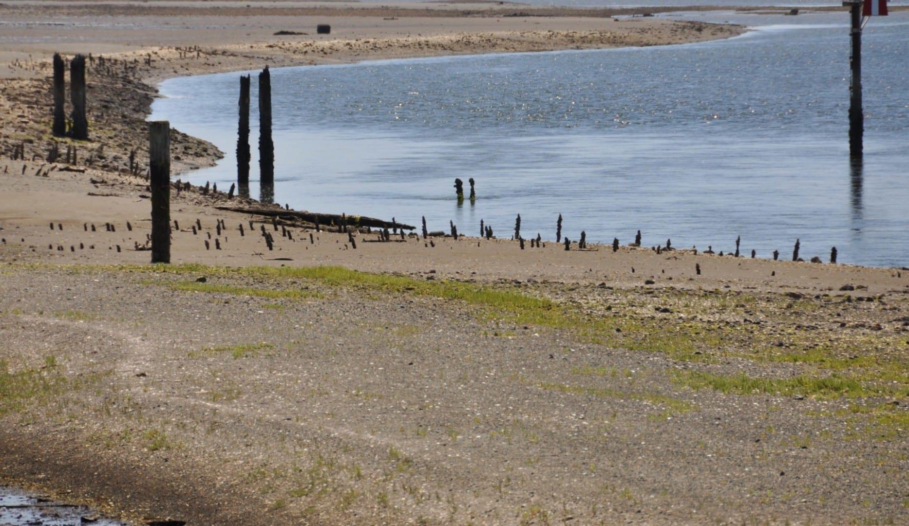 La marea baja expone miles de estacas pequeñas que alguna vez fueron usadas por las Primeras Naciones de Coast Salish para pescar en los embalses. Comox Canadá