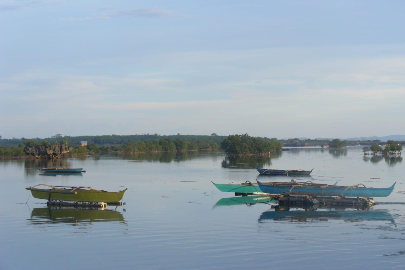 Manglares en Kamampay Cordovan, PH Filipinas