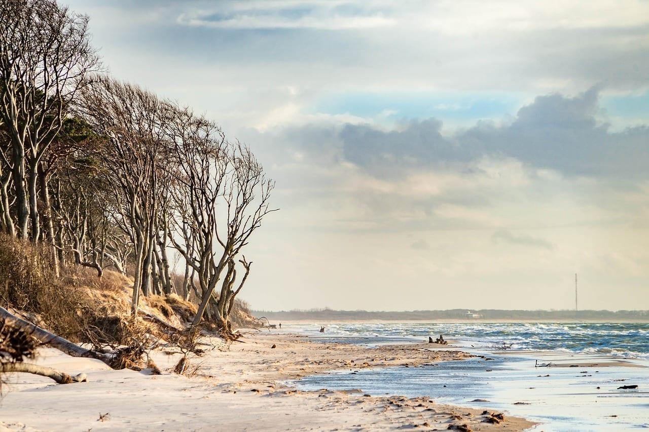 Mar Báltico Playa De Poniente Fischland-darss México